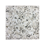 Bardese Weather Resistant Exterior Wall Granite Paint