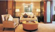 New Arrival Luxury Quality Best Design sofa-001