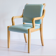 Jiangxi Shiyi Furniture Co.,Ltd. Dining Chairs