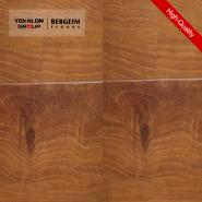 Top10 Best Selling Top Class Brand Design HouseholdLaminate Flooring-VG1063