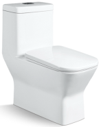Best Choice Exceptional Quality Popular Design one piece toilet T-N6119