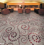 Best Selling Superior Quality Latest Design Fashional Nylon Printed Carpet 3D1012-G360 in Roll for Hotel and Apartment