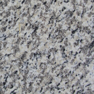 Hotselling Excellent Quality Nice Design Polished granite Tiger white Wall tile G2505
