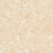 Hot Product Highest Quality Simple Style Luxury specifity Series Full Body Tiles YTN905