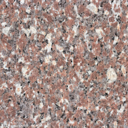 Best Choice Exceptional Quality Popular Design Polished granite G8648