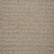 New Coming Super Quality Customization Tufted Carpet in Roll CE01 with PP and Loop Pile for Hotel and Apartment
