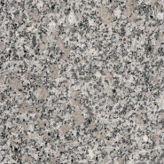 Opening Sale Samples Are Available Special Design Polished granite G4649