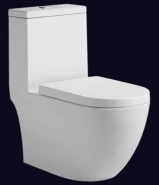 Best Factory Direct Sales High Quality Hot Design one piece toilet T-RX8834P