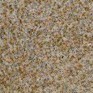 Brand New Quality Assured Latest Designs Polished granite G4645