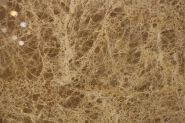 Brand New Quality Assured Latest Designs Polished marble LIGHT EMPERADOR for Wall tile M119