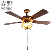 Unique decorative rechargeable emergency electric fan light with remote