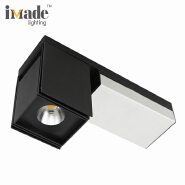 Rectangular cob double heads led surface mounted ceiling downlight