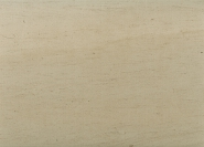 New Arrived Quick Lead Simple Design Polished marble WOOD FOSSIL for Wall tile M305