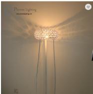 Zhongshan Plumes Lighting Co., Ltd. Desk Lamps