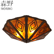 Shenzhen Morino Lighting Co., Ltd. Ceiling Lights