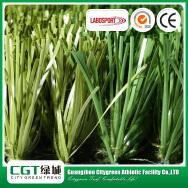 Guangdong Citygreen Sports Industry Co., Ltd. Artificial Grass
