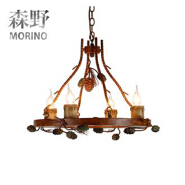 new design style iron window grill design Small pineal gland with E14 led light bulb ceiling lamp