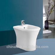 Sanitary Ware Hot and Cold Water Combination Toilet Bidet