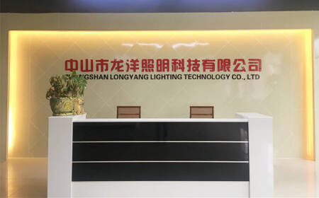 LONGYANG ELECTRICAL AND LIGHTING TECHNOLOGY