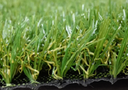 Hotselling Excellent Quality Nice Design Decorative Artificial Grass SJWMG0A11-4-25