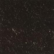 High Standard Super Black tile-YTP601BS