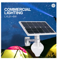 LONGYANG ELECTRICAL AND LIGHTING TECHNOLOGY Solar and Electric Power Street Lights
