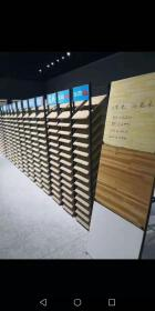Shandong Zhenshi Wood Industry Co., Ltd.