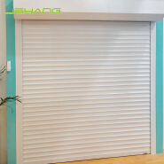 Professional manufacturer aluminum roll up door prices rolling door