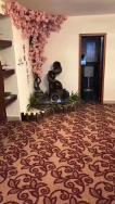 SHENZHEN JIHONGPENG INDUSTRIAL CO.,LTD. Full Carpet