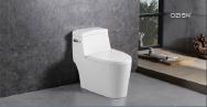 Guangdong QZISN Sanitary Ware Technology Co.,Ltd Toilets