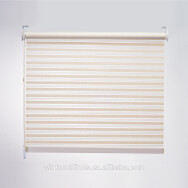 GUANGDONG WINTOM SUN-SHADE TECHNOLOGY CO., LTD Rolling Curtains