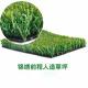 Renqiu City Bright Future Artificial Grass Factory