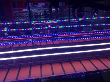 Jiangmen LongXin Lighting&Electronics Co.,Ltd.