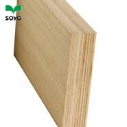 Hardwood plywood for furniture best price