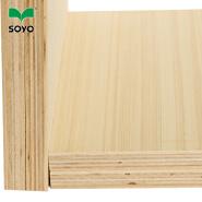 2mm wooden baltic market polish birch ordinary plywood