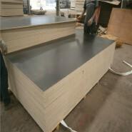 12mm film faced shuttering plywood