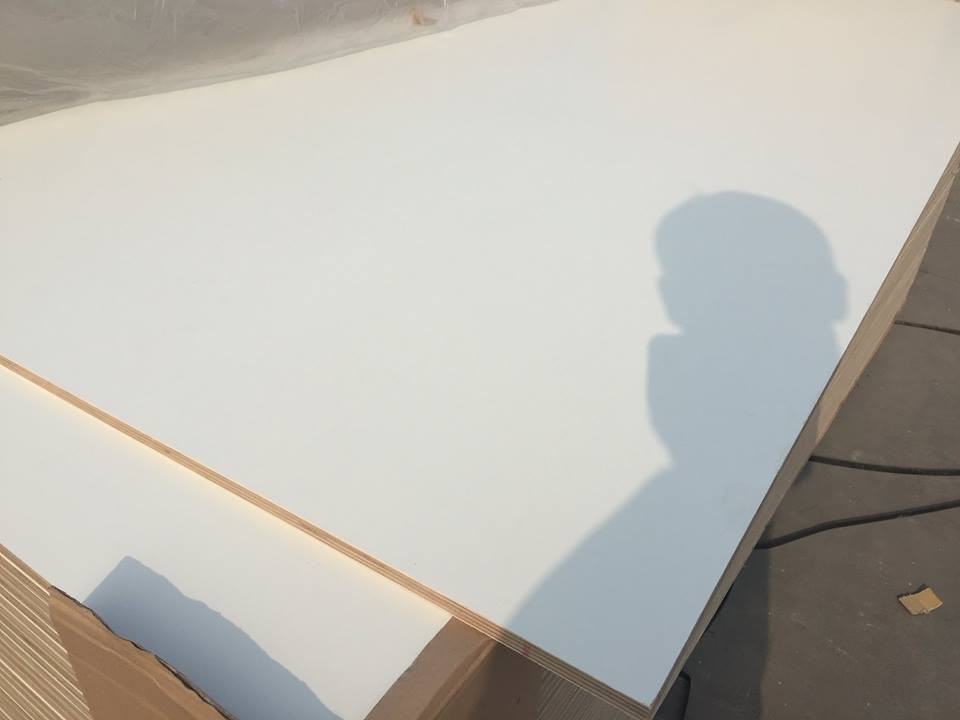 4x8 one side white melamine plywood,3mm white melamine plywood