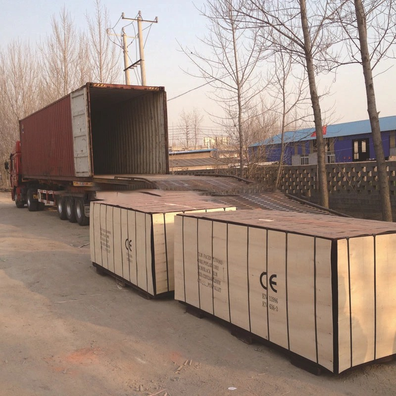 1250*2500mm large size film faced plywood for sale