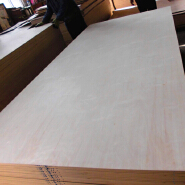 C/D grade Birch veneer plywood used for making furniture