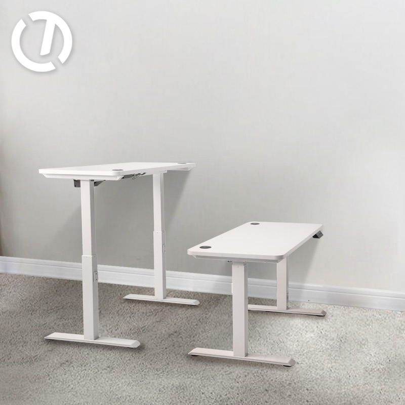 Electric Sit Stand Motorized Desk Adjustable Height Office Working Desk