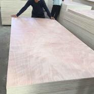 15MM waterproof phenolic resin Marine plywood sheet in eucalyptus core