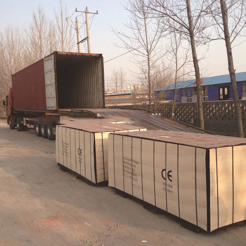 Supply 17mm finger joint/one time hot pressed marine plywood