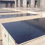 waterproof film faced plywood with MR/Melamine/WBP glue