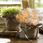 China Top Supplier Sale Dmx Flower Starlit Pull String Light