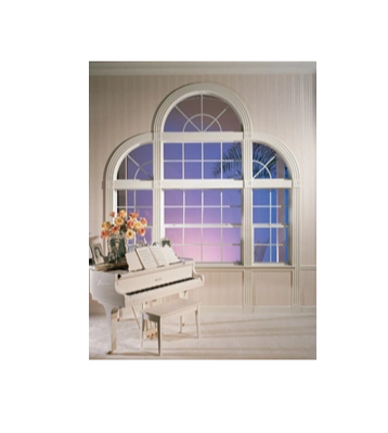 PVC/ UPVC Single Hung Window with High Quality, Competitive Price