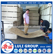 China OSB, OSB2, OSB3, wooden panel osb prices/low price