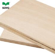 1220*2440mm E0 glue mahogany okoume wood plywood price