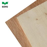 1220*2440*15mm brown film faced plywood for construction