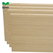 Green PP Plastic Film Faced Plywood / Ply wood / Hardwood Plywood