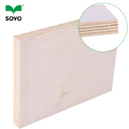 wbp grade concrete forming plywood,plywood door size,silver plywood
